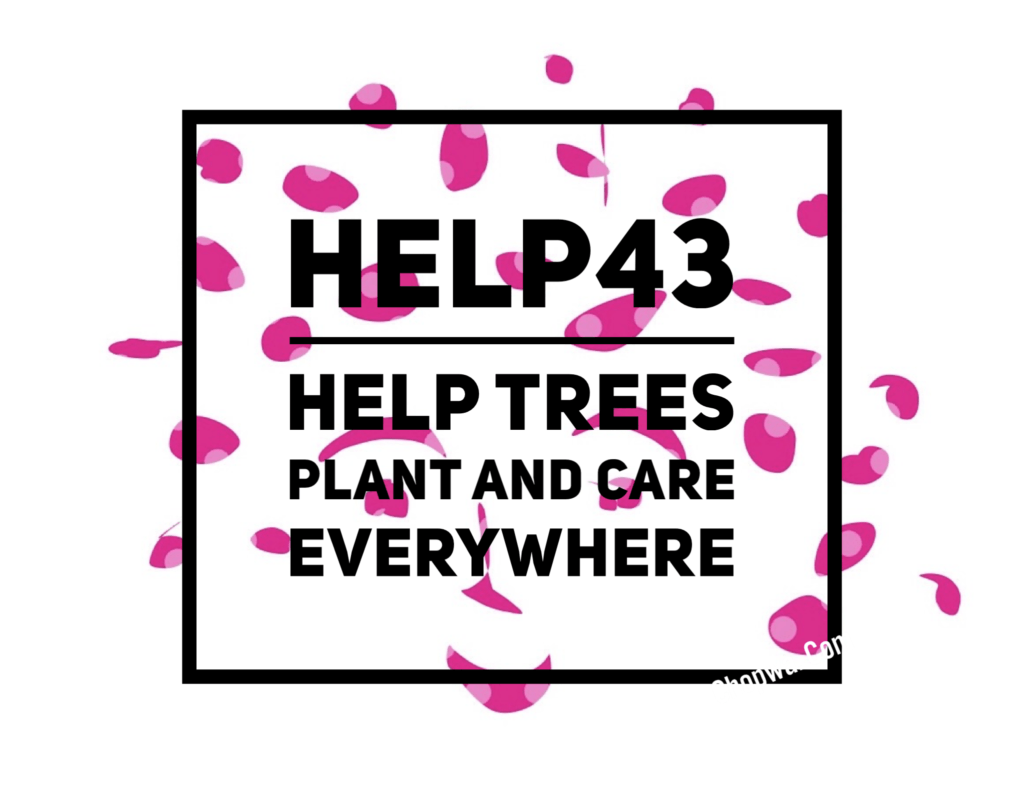 Help43 - Help the trees