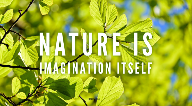 Nature is imagination itself